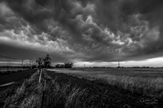 BW Mammatus (1 of 1)